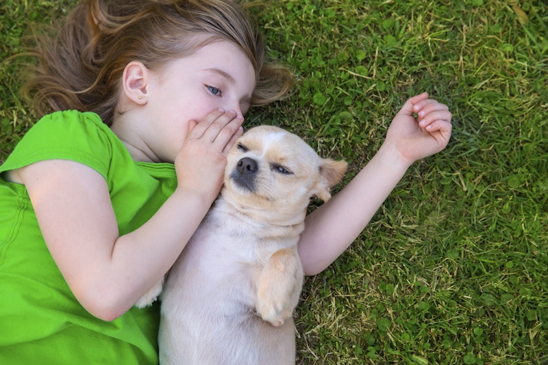 5 Reasons to Get a Pet for Your Highly Sensitive Child